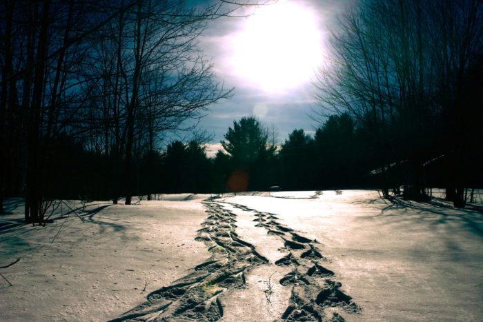 March Break Nature Retreat