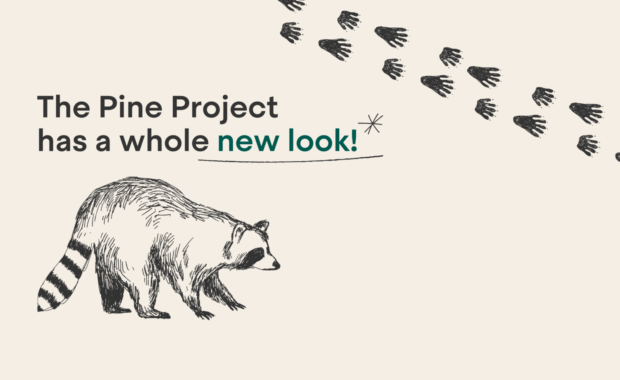 The Pine Project has a whole new look!