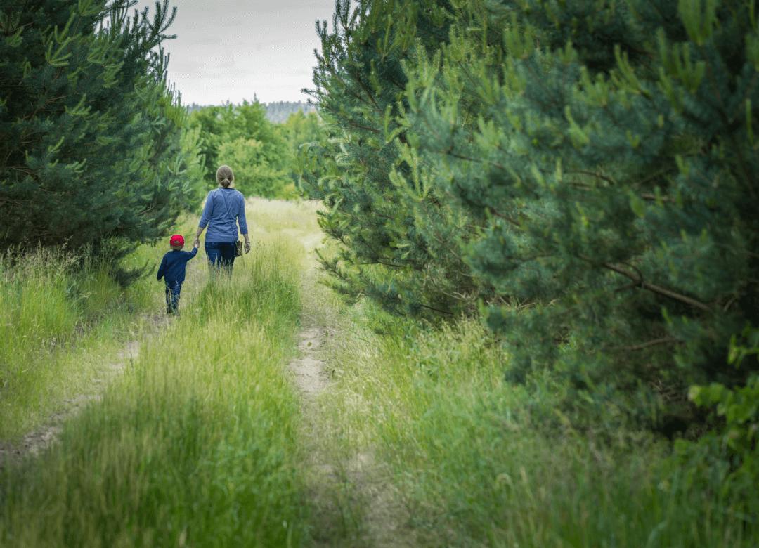 A parent's perspective
